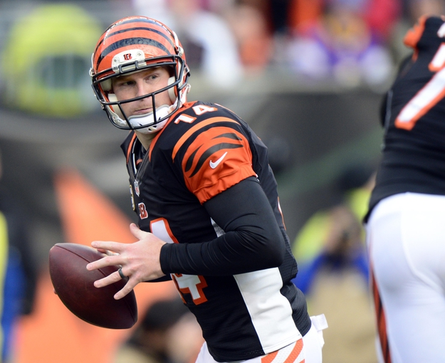 Dec 22, 2013; Cincinnati, OH, USA; Cincinnati Bengals quarterback Andy Dalton (14) looks over the field after faking a hand off during the second half of the game against the Minnesota Vikings at Paul Brown Stadium. Cincinnati Bengals beat Minnesota Vikings 42-14.  Mandatory Credit: Marc Lebryk-USA TODAY Sports