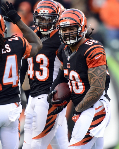 Dec 22, 2013; Cincinnati, OH, USA; Cincinnati Bengals middle linebacker Rey Maualuga (58) reacts after intercepting a pass during the second half of the game at Paul Brown Stadium. Cincinnati Bengals beat Minnesota Vikings 42-14.  Mandatory Credit: Marc Lebryk-USA TODAY Sports