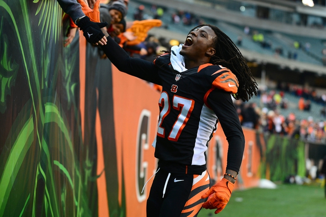 Dec 29, 2013; Cincinnati, OH, USA; Cincinnati Bengals cornerback Dre Kirkpatrick (27) celebrates with fans after defeating the Baltimore Ravens 34-17 at Paul Brown Stadium. Mandatory Credit: Andrew Weber-USA TODAY Sports