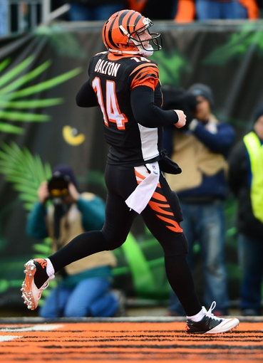Dec 29, 2013; Cincinnati, OH, USA; Cincinnati Bengals quarterback Andy Dalton (14) scores a touchdown during the fourth quarter against the Baltimore Ravens at Paul Brown Stadium. The Bengals won 34-17. Mandatory Credit: Andrew Weber-USA TODAY Sports