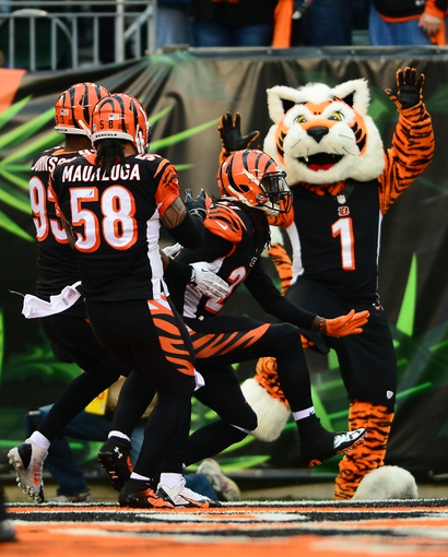 Dec 29, 2013; Cincinnati, OH, USA; Cincinnati Bengals cornerback Dre Kirkpatrick (27) celebrates with teammates after intercepting a pass and running for a touchdown during the fourth quarter against the Baltimore Ravens at Paul Brown Stadium. Bengals defeated the Ravens 34-17. Mandatory Credit: Andrew Weber-USA TODAY Sports