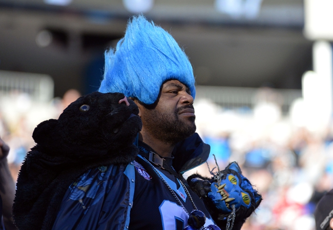 Jan 12, 2014; Charlotte, NC, USA; A Carolina Panthers fan reacts during the fourth quarter of the 2013 NFC divisional playoff football game against the San Francisco 49ers at Bank of America Stadium. San Francisco won 23-10. Mandatory Credit: Bob Donnan-USA TODAY Sports