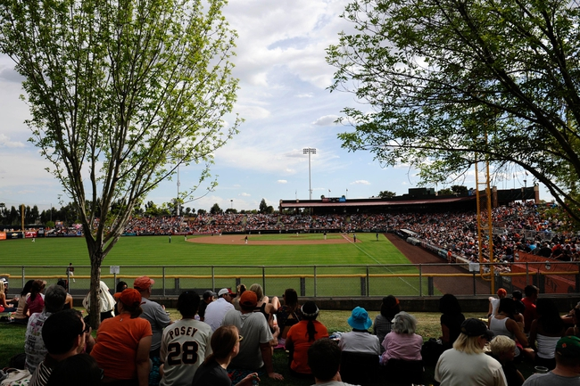 Mar 14, 2014; Scottsdale, AZ, USA; A general view of the game between the San Francisco Giants and the Colorado Rockies at Scottsdale Stadium. The Giants won 4-0. Mandatory Credit: Joe Camporeale-USA TODAY Sports