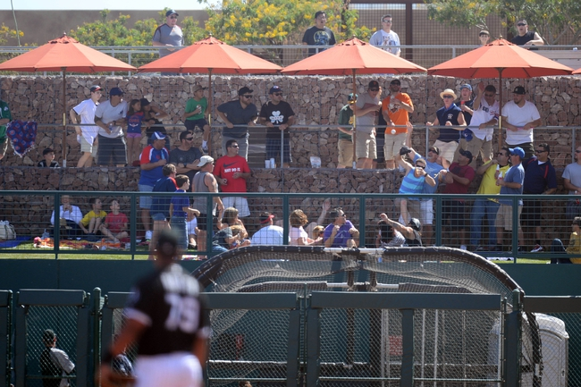 Mar 21, 2014; Phoenix, AZ, USA; Fans go after a home run  ball by Chicago Cubs third baseman Luis Valbuena (not pictured) against the Chicago White Sox at Camelback Ranch. Mandatory Credit: Joe Camporeale-USA TODAY Sports