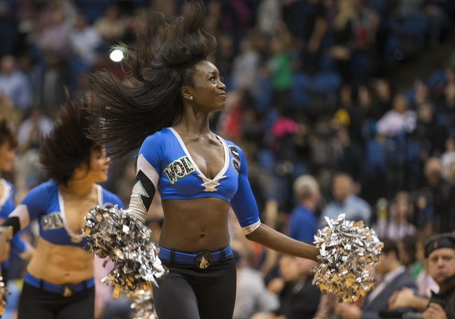 Mar 31, 2014; Minneapolis, MN, USA; Minnesota Timberwolves dancer performs during the second half against the Los Angeles Clippers at Target Center. The Clippers won 114-104. Mandatory Credit: Jesse Johnson-USA TODAY Sports