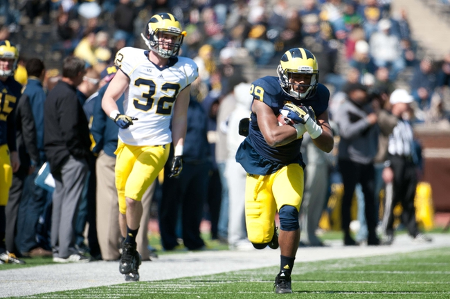 Apr 5, 2014; Ann Arbor, MI, USA; Michigan Wolverines defensive back Ross Douglas (29) and safety Shaun Austin (32) during the Spring Game at Michigan Stadium. Mandatory Credit: Tim Fuller-USA TODAY Sports