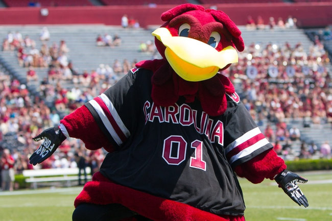 Apr 12, 2014; Columbia, SC, USA; South Carolina Gamecocks mascot Cocky during halftime of the South Carolina spring game at Williams-Brice Stadium. Mandatory Credit: Joshua S. Kelly-USA TODAY Sports