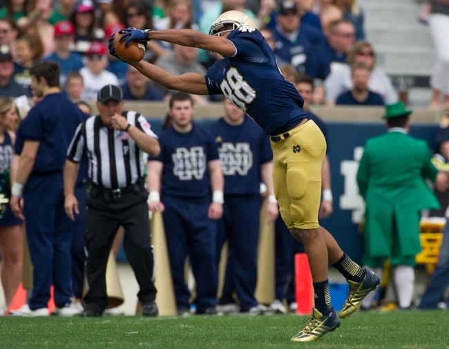 Apr 12, 2014; Notre Dame, IN, USA; Notre Dame Fighting Irish wide receiver Corey Robinson (88) catches the ball in the first quarter of the Blue-Gold game at Notre Dame Stadium. Mandatory Credit: Matt Cashore-USA TODAY Sports