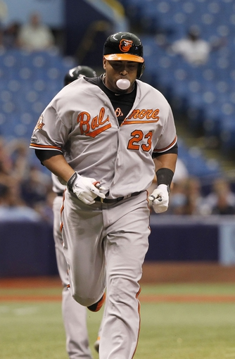 Jun 18, 2014; St. Petersburg, FL, USA; Baltimore Orioles left fielder Nelson Cruz (23) runs home after he homers during the eighth inning against the Tampa Bay Rays at Tropicana Field. Baltimore Orioles defeated the Tampa Bay Rays 2-0. Mandatory Credit: Kim Klement-USA TODAY Sports