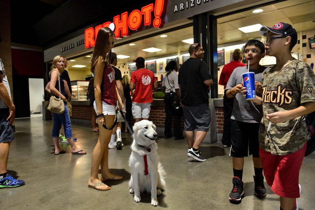 Jun 22, 2014; Phoenix, AZ, USA; A Arizona Diamondbacks fan and her dog wait in line for snacks during the game against the San Francisco Giants at Chase Field. Mandatory Credit: Matt Kartozian-USA TODAY Sports