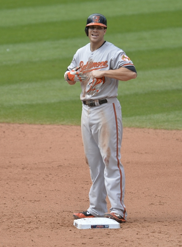 Aug 17, 2014; Cleveland, OH, USA; Baltimore Orioles third baseman Chris Davis (19) reacts after hitting an RBI double in the sixth inning against the Cleveland Indians at Progressive Field. Mandatory Credit: David Richard-USA TODAY Sports