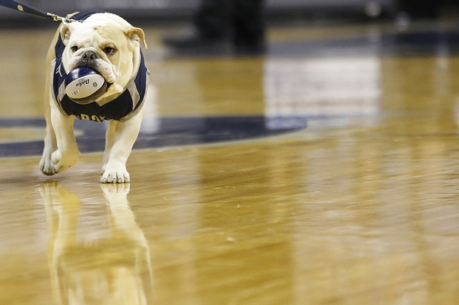 Georgetown vs. Creighton - 1/3/15 College Basketball Pick, Odds, and Prediction