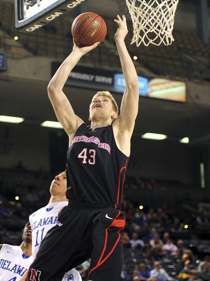 Northeastern Huskies vs. Detroit Titans - 1/19/15 College Basketball Pick, Odds, and Prediction