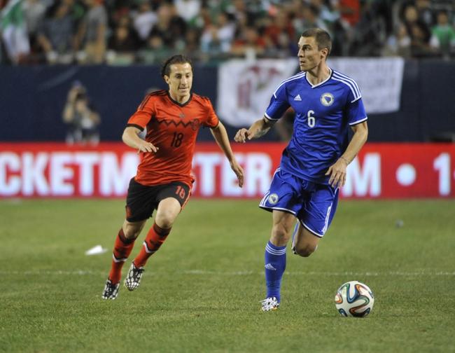 2014 FIFA World Cup: Bosnia-Herzegovina vs. Iran Pick, Odds, Prediction - 6/25/14