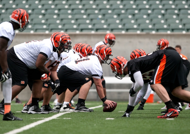 NFL Previews:  2014 Cincinnati Bengals Preview and Analysis