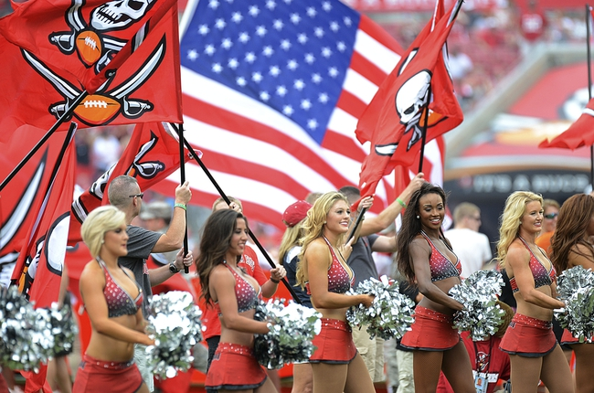 Tampa Bay Buccaneers vs. Minnesota Vikings 10/26/14 NFL Pick, Odds, and Prediction