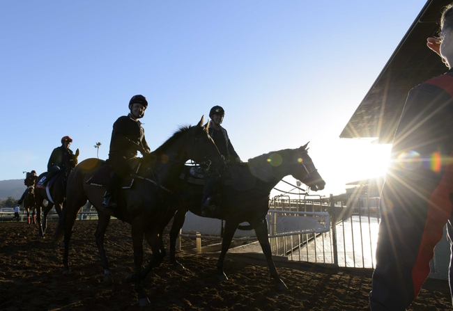 2014 Breeder's Cup Dirt Mile Pick, Odds, Post Positions, and Preview
