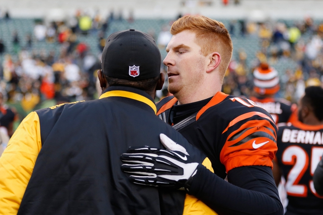 Steelers vs. Bengals - 12/28/14 NFL Pick, Odds, and Prediction