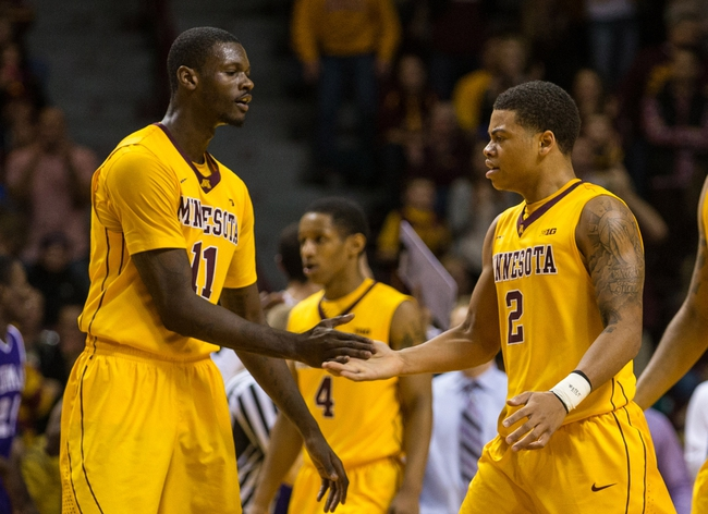 Minnesota vs. Iowa - 1/13/15 College Basketball Pick, Odds, and Prediction