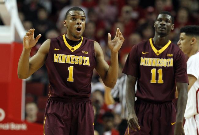 Minnesota vs. Illinois - 1/24/15 College Basketball Pick, Odds, and Prediction