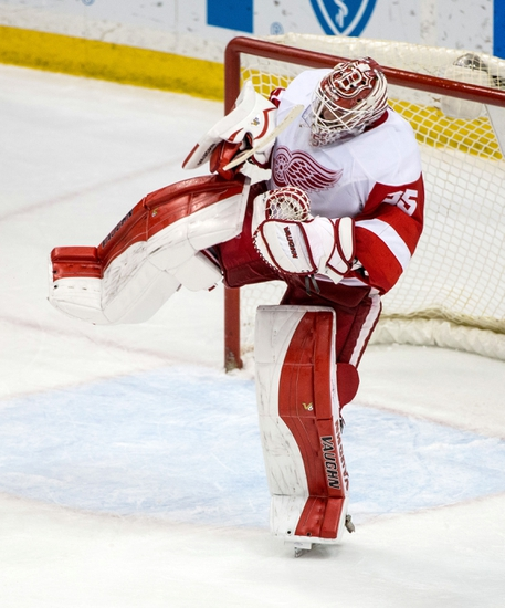 Minnesota Wild vs. Detroit Red Wings - 12/28/15 NHL Pick, Odds, and Prediction