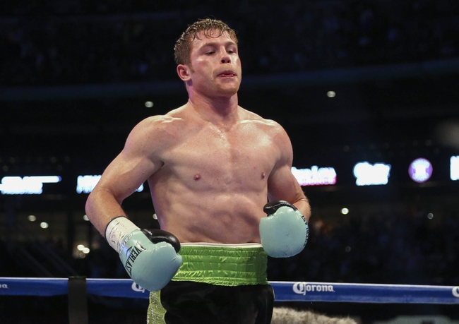 Miguel Cotto vs. Canelo Alvarez Boxing Preview, Pick, Odds, Prediction - 11/21/15