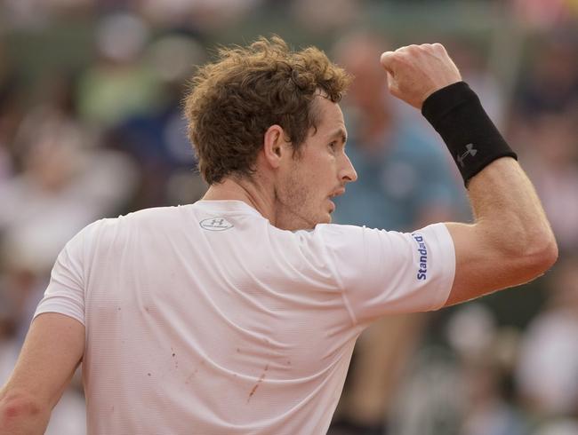 Andy Murray vs. Radek Stepanek 2016 French Open Pick, Odds, Prediction