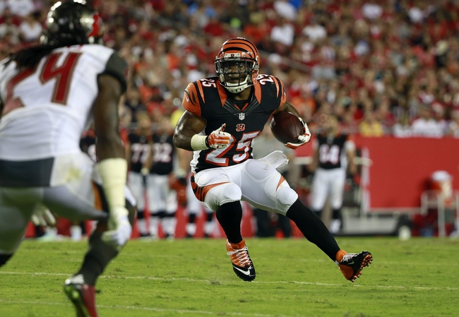 Fantasy Football Draft 2015: Running Back (RB) Value Picks