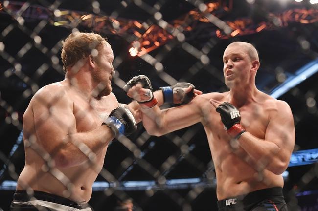 Jared Rosholt vs. Roy Nelson UFC Pick, Preview, Odds, Prediction - 2/6/16
