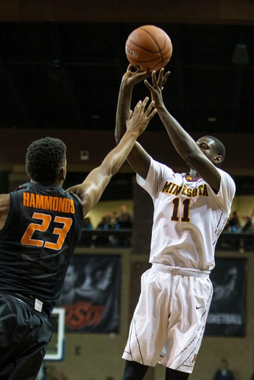 Minnesota Golden Gophers vs. Wisc-Milwaukee Panthers - 12/23/15 College Basketball Pick, Odds, and Prediction