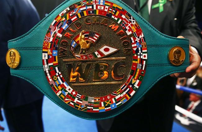 Akira Yaegashi vs. Javier Mendoza Boxing Preview, Pick, Odds, Prediction - 12/29/15