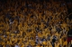 May 12, 2013; Oakland, CA, USA; Golden State Warriors fans use thundersticks during overtime in game four of the second round of the 2013 NBA Playoffs against the San Antonio Spurs at Oracle Arena. The Warriors defeated the Spurs 97-87 in overtime. Mandatory Credit: Kyle Terada-USA TODAY Sports