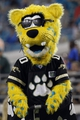 Aug 9, 2013; Jacksonville, FL, USA; Jacksonville Jaguars mascot, Jaxson during the second half against the Miami Dolphins at EverBank Field. Miami Dolphins defeated the Jacksonville Jaguars 27-3. Mandatory Credit: Kim Klement-USA TODAY Sports