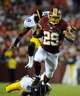Aug 19, 2013; Landover, MD, USA; Washington Redskins running back Roy Helu (29) runs for a touchdown during the second half against the Pittsburgh Steelers at FedEX Field. Mandatory Credit: Brad Mills-USA TODAY Sports