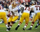 Aug 24, 2013; Landover, MD, USA; Washington Redskins quarterback Rex Grossman (8) takes the snap from center during the second half against the Buffalo Bills at FedEX Field. Mandatory Credit: Brad Mills-USA TODAY Sports