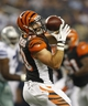 Aug 24, 2013; Arlington, TX, USA; Cincinnati Bengals running back Rex Burkhead (33) catches a pass in the fourth quarter of the game against the Dallas Cowboys at AT&T Stadium.  The Cowboys won 24-18. Mandatory Credit: Tim Heitman-USA TODAY Sports