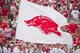Aug 31, 2013; Fayetteville, AR, USA; The Arkansas Razorback flag waves in front of the crowd during a game against the Louisiana Ragin' Cajuns at Donald W. Reynolds Razorback Stadium. Arkansas defeated Louisiana 34-14. Mandatory Credit: Beth Hall-USA TODAY Sports