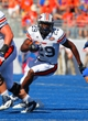 Sep 7, 2013; Boise, ID, USA; Tennessee Martin Skyhawks running back Abou Toure (29) runs for gain during the second half against the Boise State Broncos at Bronco Stadium.  Boise State defeated Tennessee Martin 63-14.  Mandatory Credit: Brian Losness-USA TODAY Sports