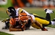 Sep 16, 2013; Cincinnati, OH, USA; Pittsburgh Steelers cornerback William Gay (22) pushes Cincinnati Bengals wide receiver Marvin Jones (82) out of bounds after making a catch during the fourth quarter at Paul Brown Stadium. Mandatory Credit: Andrew Weber-USA TODAY Sports