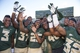 Sep 21, 2013; Waco, TX, USA; Baylor Bears wide receiver Robbie Rhodes (3) and cornerback Josh Benenoch (37) and running back Lache Seastrunk (25) and linebacker Travon Blanchard (48) and safety Collin Simpson (32) celebrate the win over the Louisiana Monroe Warhawks at Floyd Casey Stadium. The Bears defeated the Warhawks 70-7. Mandatory Credit: Jerome Miron-USA TODAY Sports