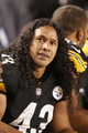 Sep 22, 2013; Pittsburgh, PA, USA; Pittsburgh Steelers strong safety Troy Polamalu (43) on the sidelines against the Chicago Bears during the fourth quarter at Heinz Field. The Bears won 40-23. Mandatory Credit: Charles LeClaire-USA TODAY Sports