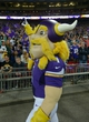Sep 29, 2013; London, UNITED KINGDOM; Minnesota Vikings mascot Viktor during the NFL International Series game against the Pittsburgh Steelers at Wembley Stadium. The Vikings defeated the Steelers 34-27. Mandatory Credit: Kirby Lee-USA TODAY Sports