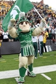 Oct 5, 2013; Iowa City, IA, USA;  Michigan State Spartans mascot Sparty celebrates their win against the Iowa Hawkeyes at Kinnick Stadium. Michigan State beat Iowa 26-14.  Mandatory Credit: Reese Strickland-USA TODAY Sports