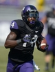Oct 12, 2013; Fort Worth, TX, USA; TCU Horned Frogs receiver David Porter (14) scores on a 75-yard touchdown reception in the third quarter against the Kansas Jayhawks at Amon G. Carter Stadium. TCU defeated Kansas 27-17. Mandatory Credit: Kirby Lee-USA TODAY Sports