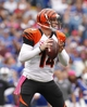 Oct 13, 2013; Orchard Park, NY, USA; Cincinnati Bengals quarterback Andy Dalton (14) drops to pass against the Buffalo Bills during the second half at Ralph Wilson Stadium. Bengals beat the Bills 27-24 in overtime. Mandatory Credit: Kevin Hoffman-USA TODAY Sports