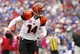 Oct 13, 2013; Orchard Park, NY, USA; Cincinnati Bengals quarterback Andy Dalton (14) rolls out against the Buffalo Bills during the second half at Ralph Wilson Stadium. Bengals beat the Bills 27-24 in overtime. Mandatory Credit: Kevin Hoffman-USA TODAY Sports