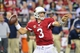 Oct 17, 2013; Phoenix, AZ, USA; Arizona Cardinals quarterback Carson Palmer (3) throws during the second half against the Seattle Seahawks at University of Phoenix Stadium. Mandatory Credit: Matt Kartozian-USA TODAY Sports