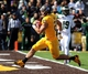 Oct 19, 2013; Laramie, WY, USA; Wyoming Cowboys running back Shaun Wick (21) scores a touchdown against the Colorado State Rams during the second quarter at War Memorial Stadium.  The Rams defeated the Cowboys 52-22.   Mandatory Credit: Troy Babbitt-USA TODAY Sports