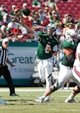 Oct 26, 2013; Tampa, FL, USA; South Florida Bulls quarterback Steven Bench (2) throws the ball against the Louisville Cardinals during the second half at Raymond James Stadium. Mandatory Credit: Kim Klement-USA TODAY Sports
