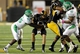Oct 26, 2013; Hattiesburg, MS, USA; North Texas Mean Green defensive tackle Alexander Lincoln (95) sacks Southern Miss Golden Eagles quarterback Nick Mullens (14) in the first quarter of their game at M.M. Roberts Stadium. Mandatory Credit: Chuck Cook-USA TODAY Sports